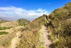远足狭窄的足迹在原野 免版税库存图片