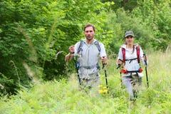远足的旅行背包徒步旅行者 库存图片