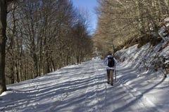 远足者和雪 免版税库存图片