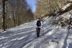 远足者和雪 免版税库存照片