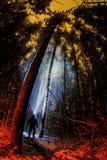 远足者在与顶头灯的晚上 免版税库存照片