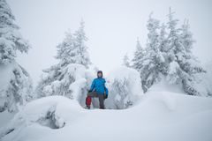 远足者在多雪的森林里 免版税图库摄影