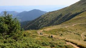 远足者在山走在夏天 影视素材