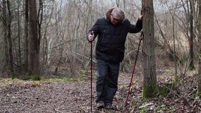 远足者在树附近做腿的锻炼 股票录像
