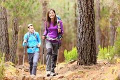 远足者在森林里 免版税库存照片