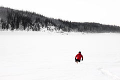 远足者在阿拉斯加冬天 库存照片
