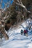 远足者在Nakasendo途中的冬天,日本 免版税库存照片
