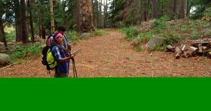 远足者夫妇大角度看法搜寻他们的方向的 影视素材