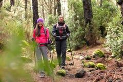 远足者步行在森林里的夫妇背包徒步旅行者 免版税图库摄影