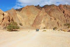 远足者步行在沙漠 库存照片