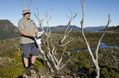 远足者男性地图判读塔斯马尼亚岛原野 免版税库存图片