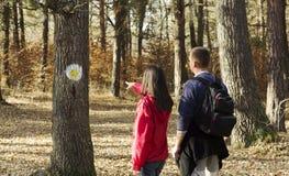 远足者的森林标志 免版税库存图片