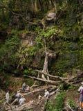 远足者采取休息中止在瀑布 免版税图库摄影