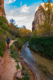 远足者,小牛小河峡谷足迹 库存图片