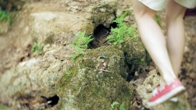 远足脚的步远足者户外 在岩石地形的走的脚 股票录像