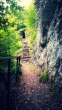 远足自然natuur森林岩石 库存图片