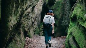 远足迁徙在山 一名年轻曲棍球妇女的后面的背面图走与背包的 影视素材