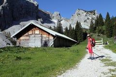 远足迁徙的孩子在阿尔卑斯 免版税库存照片