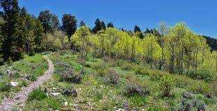 远足道路Oquirrh山的看法沿Wasatch的由Kennecott里约Tinto铜矿朝向落矶山, Tooele和 库存照片