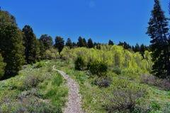 远足道路Oquirrh山的看法沿Wasatch的由Kennecott里约Tinto铜矿朝向落矶山, Tooele和 免版税库存图片