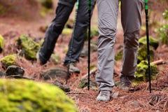 远足-走在森林里的远足者用棍子 免版税库存照片
