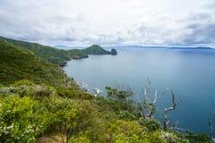 远足Coromandel沿海走道,新西兰13 库存照片