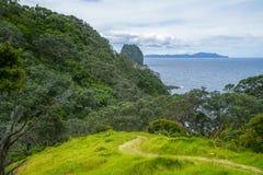 远足Coromandel沿海走道,新西兰32 免版税库存照片