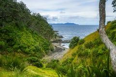 远足Coromandel沿海走道,新西兰35 免版税图库摄影