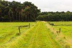 远足GR5足迹在比荷卢三国 图库摄影