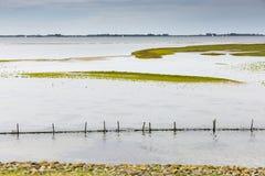 远足GR5足迹在比荷卢三国 免版税库存图片