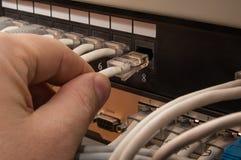 连接对接线板的补丁缆绳 图库摄影