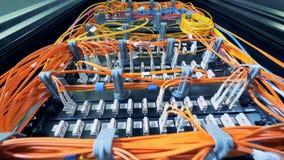 连接数据服务器的多色导线 影视素材
