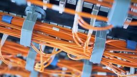 连接数据服务器的明亮的缆绳入网络 影视素材