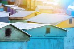 连续站立蜂五颜六色的蜂房,蜂房在村庄 库存图片