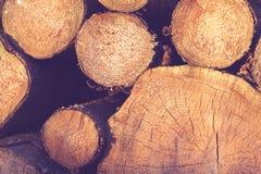 连续被堆积的圆的木柴 库存图片
