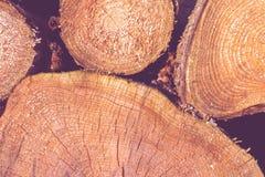 连续被堆积的圆的木柴 免版税库存照片