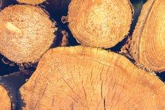 连续被堆积的圆的木柴 免版税图库摄影