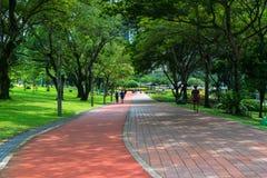 连续轨道通过公园在城市 免版税图库摄影