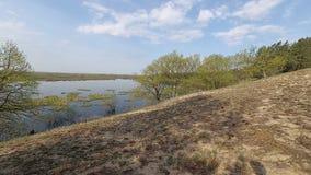 迟来的 春天 小山的森林在水位高的期间 影视素材