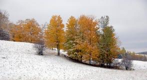 延迟秋天的横向 图库摄影