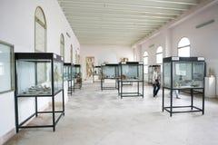迦太基国家博物馆内部  免版税库存图片