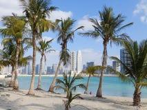 迪拜、阿拉伯联合酋长国- 2月02日, 2014棕榈,海滩和摩天大楼在迪拜 库存照片