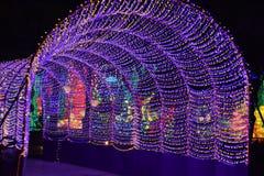 迪拜庭院焕发在迪拜,阿拉伯联合酋长国 库存图片