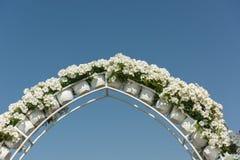 迪拜有百万朵花的奇迹庭院 图库摄影