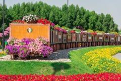 迪拜有百万朵花的奇迹庭院 库存图片
