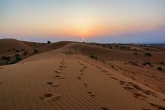 迪拜沙漠和沙丘在日落,阿拉伯联合酋长国 免版税图库摄影