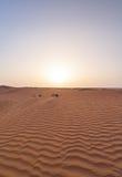 迪拜沙漠沙丘 库存图片
