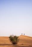 迪拜沙漠沙丘 免版税图库摄影