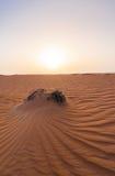 迪拜沙漠沙丘 图库摄影
