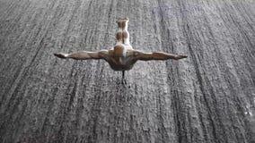 瀑布和采珠人的雕刻的构成在迪拜购物中心 股票视频